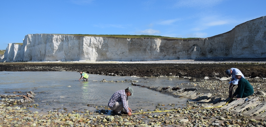 Volunteers record the wreck of the Coonatto on National Trust land at Birling Gap