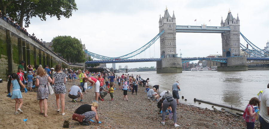 Thames Discovery Programme celebrates five years of success