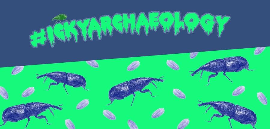 IckyArchaeology Grain Pest