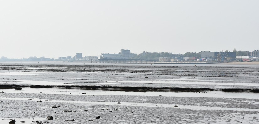 Low tide at Cleethorpes (c) CITiZAN
