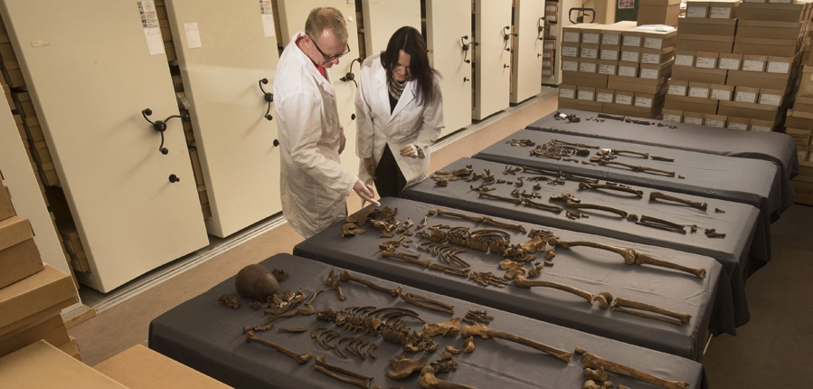 MOLA osteologists examine Crossrail skeletons (c) MOLA