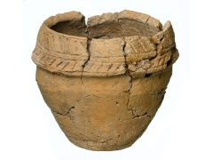 Cremation urn uncovered during excavations at Andover (c) MOLA