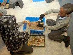 School children excavating archaeology