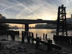 Cannon Street Foreshore with Thames Discovery Programme