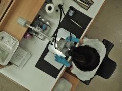 Luisa Duarte, MOLA conservator, cleans a writing tablet (c) NextShoot