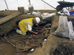 Excavating mass burials at St Mary Spital