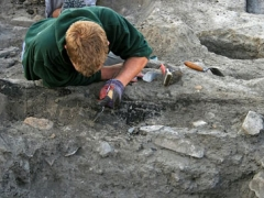 Excavating the late Roman burnt timber walls in trench one
