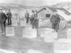 Norwegian ice cutters handle blocks of ice harvested from frozen lakes using metal tongs around 1900 (c) London Canal Museum