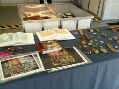 Olympic Park archaeology display (c) MOLA