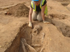 Roman skeleton being excavated by archaeologist