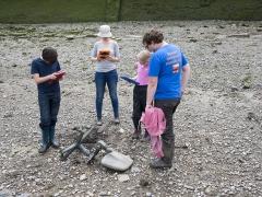 Thames Discovery Programme Tadpoles (c) MOLA