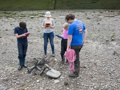 Thames Discovery Programme Tadpoles (c) MOLA