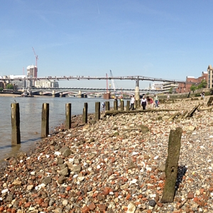 Thames Discovery Programme at Trig Lane