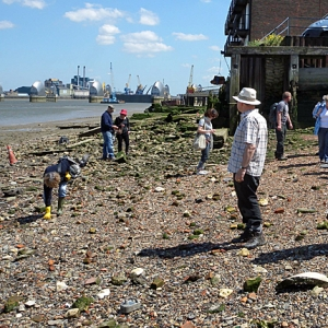 The Thames Discovery Programme on the Charlton foreshore (c) Thames Discovery Programme