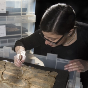 A conservator working on a fresco laid in a plastic box on a piece of black foam