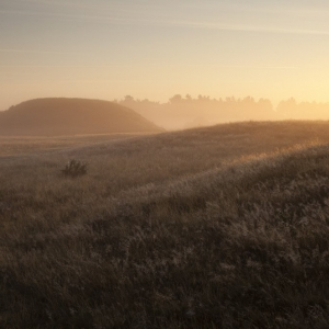 Sutton Hoo (c) National Trust