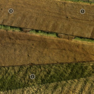 Medieval ploughing marks at Darsdale Farm, Oxfordshire.